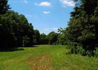 A rolling road runs through a field at Biscoe Gray Heritage Farm.